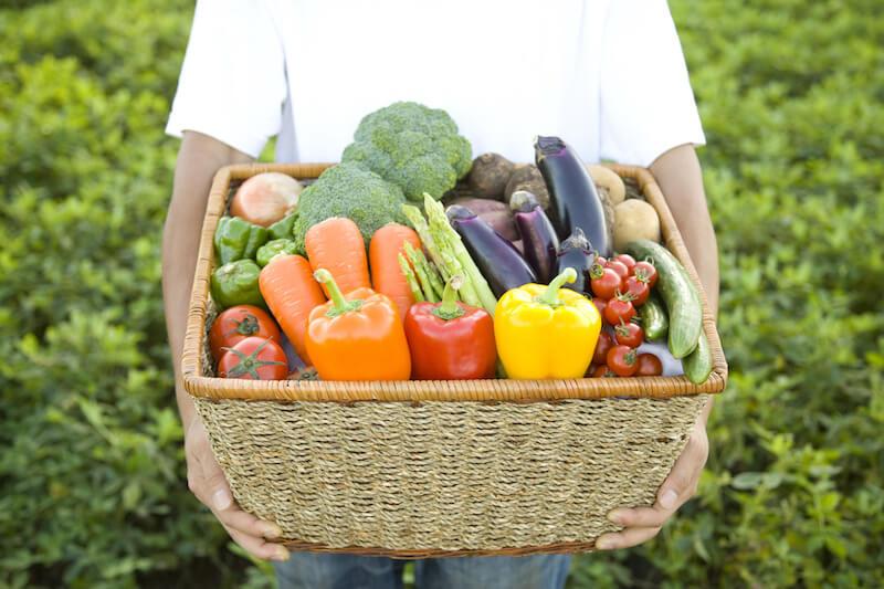 有機野菜・無農薬野菜